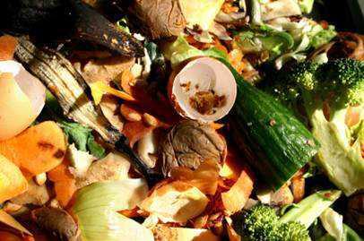 餐厨垃圾对环境危害